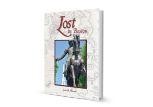 Lost In Boston 3D-book