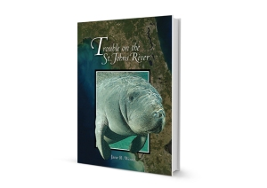 Trouble on the St. Johns River 3D-book